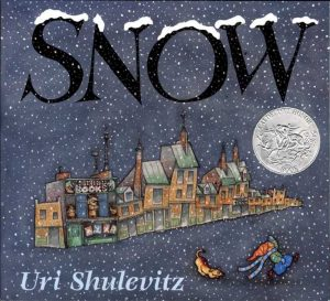 Snow a Winter Book for kids