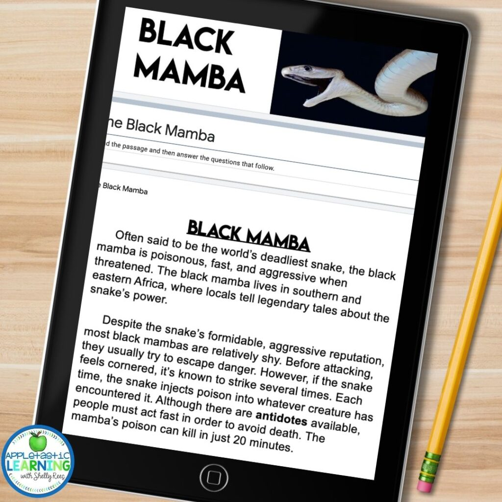 Google Form reading passage about the Black Mamaba